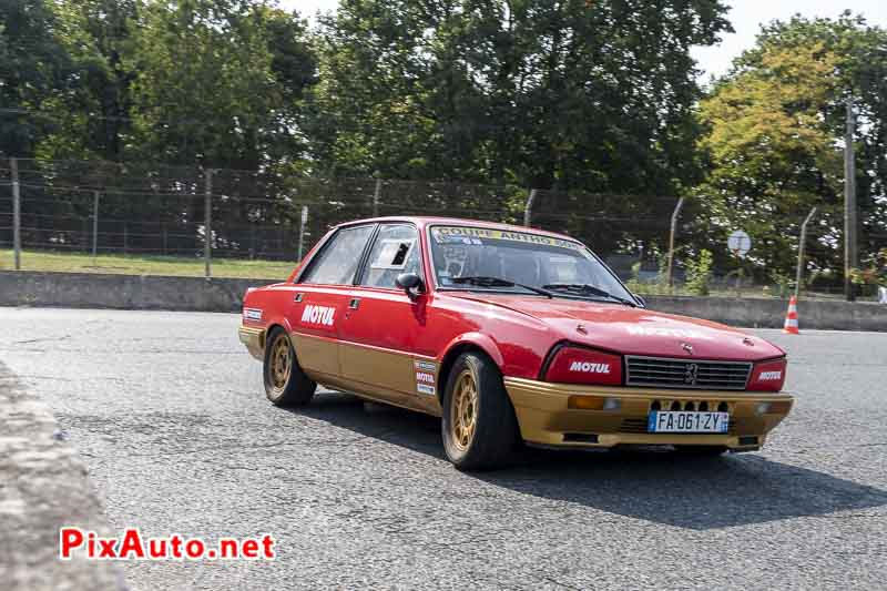United Colors Of Autodrome, Peugeot 505 V6 S Coupe Antho